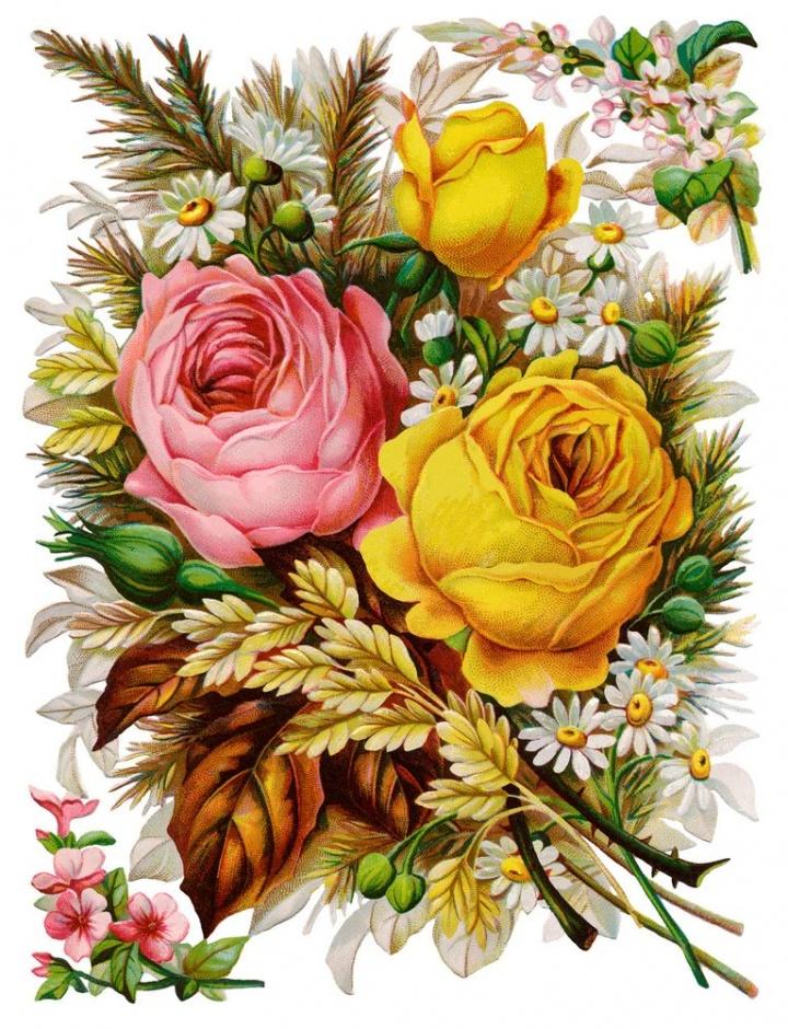 удивительно цветные цветочки для открыток нем нет четких